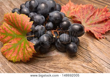 Grapes on a old wooden table in studio