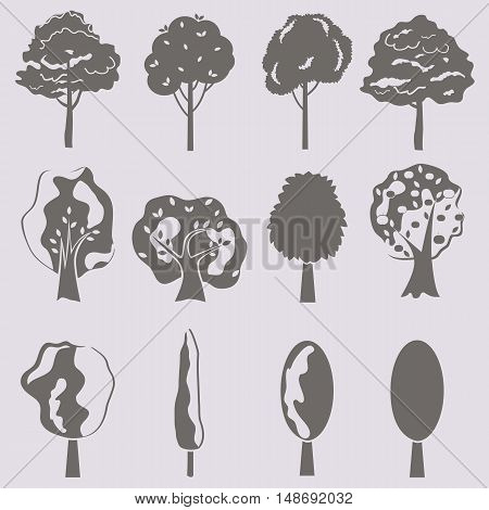 Vector collection of tree silhouettes isolates. Set of abstract stylized trees.