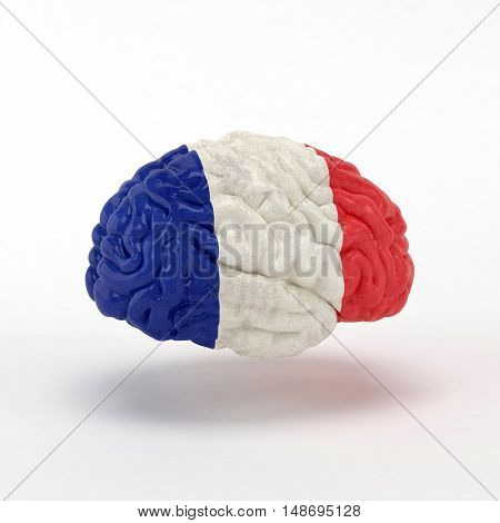 France Flag on Human brain. 3D illustration.