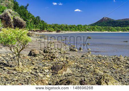 Rocky beach in the Cape Hillsborogh National Park.