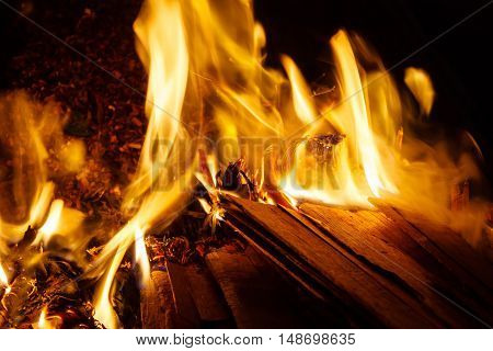 Piles Of Scrap Wood On Fire