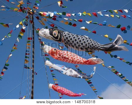 Koinobori fish shaped japanese kite carp koi japanes