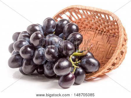 Blue grapes in a wicker basket isolated on white background.