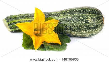 One zucchini with leaf and flower isolated on white background.