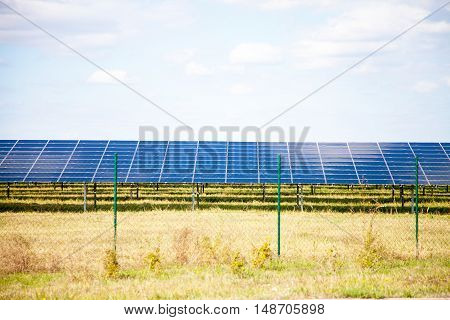 a lot of solar panels on a green field