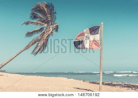 Sandy beach palm tree and Dominican Republic flag