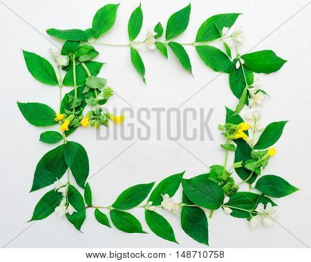 Wreath Of Jasmine Flowers And Leaves And Yellow Field Flowers