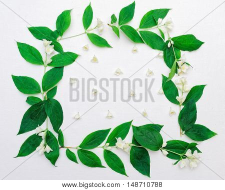 Wreath Of Jasmine Flowers And Leaves On White