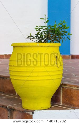Garden decoration -  yellow clay decorative  flowerpot