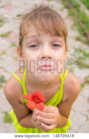 Funny Girl With A Flower In Her Hand Crouched Begging A Face Looking To The Frame