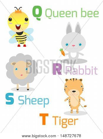 Cute alphabet with funny animals from Q toT , Illustration of alphabet with animals Q R S T ,queen bee, rabbit, sheep, tiger, Funny cartoon animals on white background, Vector Illustration.
