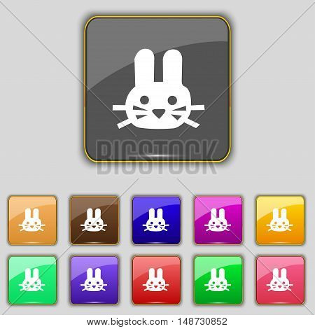 Rabbit Icon Sign. Set With Eleven Colored Buttons For Your Site. Vector
