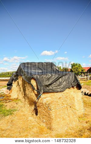 Autumn Rural Landscape With Hay Bale, And Farm