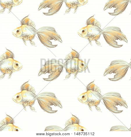 Watercolor fish on white background. Seamless pattern with hand-drawn goldfish 5