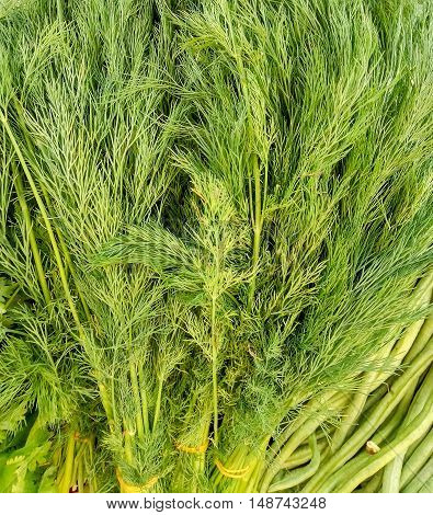 Bunch of ripe green dill background at the market