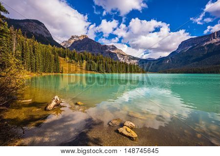 Mountain Emerald lake. The turquoise water in the wooded mountains. The concept of eco-tourism and active recreation. Canada, Yoho National Park