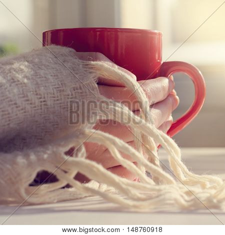 red mug in his hands covered with warm blanket / warming drink in the home environment