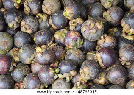close up fresh Mangosteen fruit in market