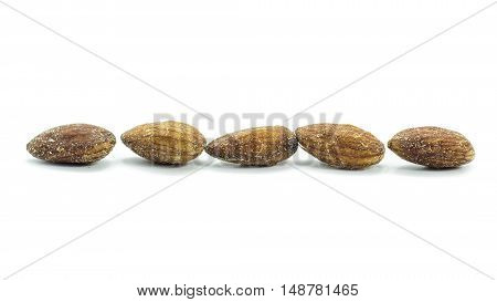 Dried Almonds Mixed With Salt