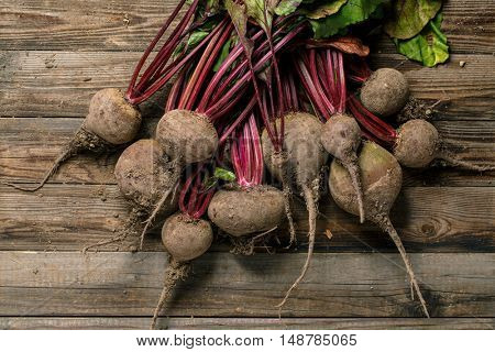 Overhead view of a beets