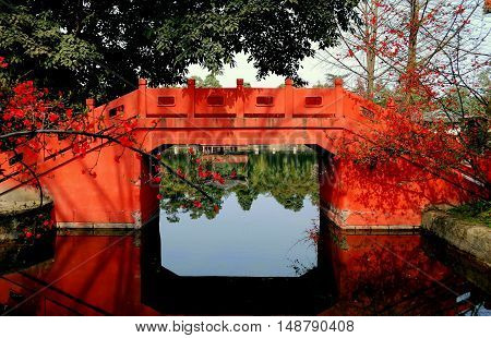 Pixian China - February 23 2009: Spring flowering Quince and coral coloured Chinese bridge spans a canal next to the lake at Wang Cong Ci Park *