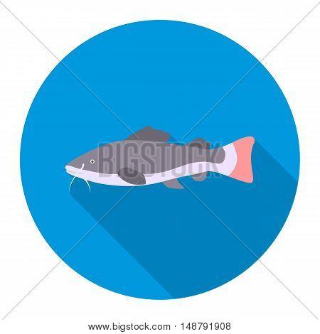 Phractocephalus hemioliopterus fish icon flat. Singe aquarium fish icon from the sea, ocean life flat.