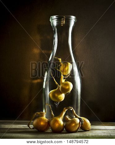 Raw onions hanging in an old glass bottle. On a brown background