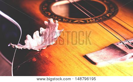 one dry autumn leaf on the guitar strings