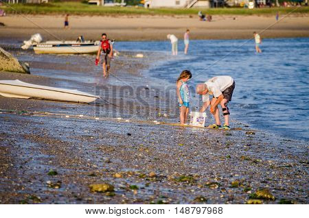 Wellfleet, USA - July 30, 2014: Grandfather with granddaughter catching fish in bucket on rocky beach shore in Cape Cod