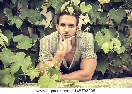 Front view of handsome man leaning among vine leaves in garden in sunlight