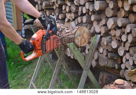 Work with a chainsaw South Bohemia Czech Republic