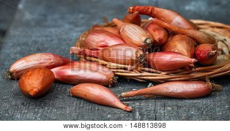 Organic shallot onions on an old wooden table. A rustic style. Selective focus