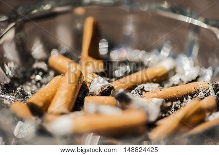 many cigarettes in a cigarette butt after smoking