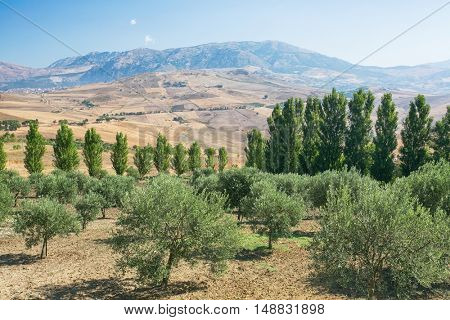 Inland mountain landscape of inner Sicily in summer day, Sicily island
