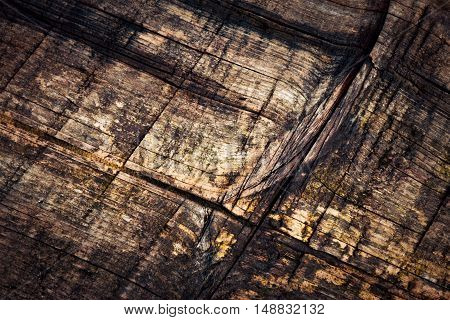 abstract background or texture detail rotten old spruce boards