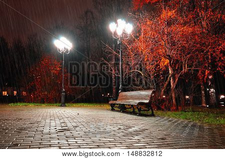 Autumn Night Landscape Of Night Autumn Park Under Falling Rain