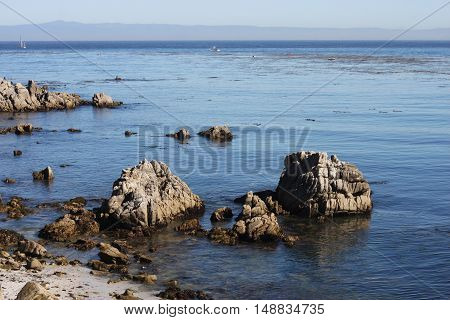 This is an image of the rocky coast of Pacific Grove, California.