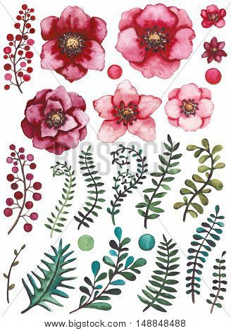 Collection with Watercolor Bright Red Flowers Berries Green and Blue Leaves and Vine