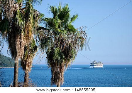 HERCEG NOVI, MONTENEGRO - JULY 21, 2016: Celebrity Millennium cruise ship sailing in Bay Kotor waters, on foreground palm trees of Herceg Novi promenade