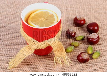 Cup of hot tea with lemon wrapped woolen scarf and autumn decoration warming beverage for flu and cold
