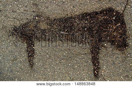 Asphalt, asphalt texture, closeup, cracked asphalt, abstract asphalt background, animal pattern