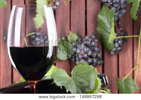 red wine glass with grapes and vine leaves