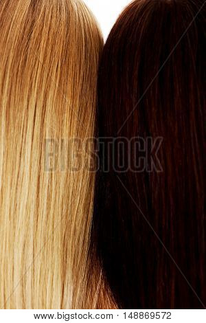 Long hair. Hairstyle. Hair salon. Woman with healthy hair.
