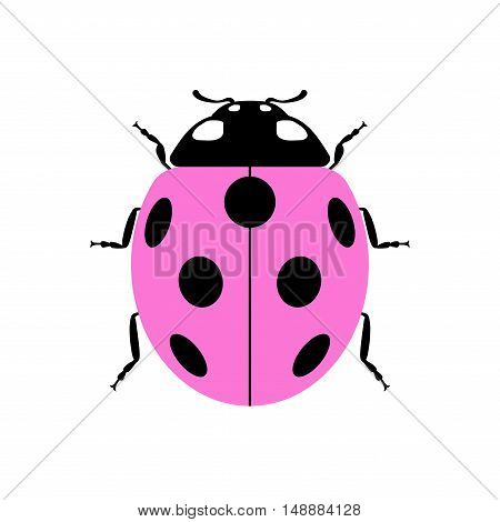 Ladybug small icon. Pink lady bug sign isolated on white background. Wildlife animal design. Cute colorful ladybird. Insect cartoon beetle. Symbol of nature spring or summer. Vector illustration