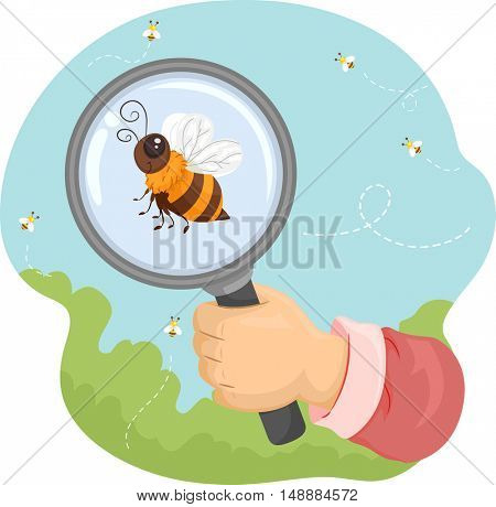 Animal Illustration Featuring a Honeybee Being Observed Under a Magnifying Glass