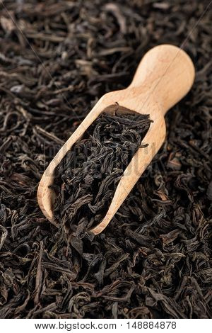 Dry black tea leaves on a wooden spoon on a black tea background. Tea leaves background. Black tea