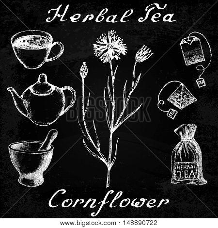 Cornflower hand drawn sketch botanical illustration. Utensils for tea. Vector illustation. Medical herbs. Effect of chalk board. Grunge background