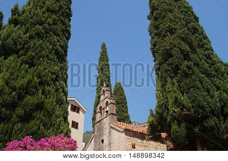 Catholic small Church surrounded by century old cypress trees flora and building