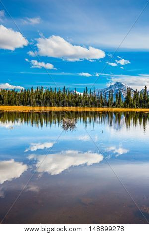 The concept of ecotourism. The mountains are covered in the snow. Shallow marshy lake in the Rocky Mountains. Autumn in Canada