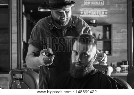Serious Young Bearded Man Getting Haircut By Barber. Barbershop Theme